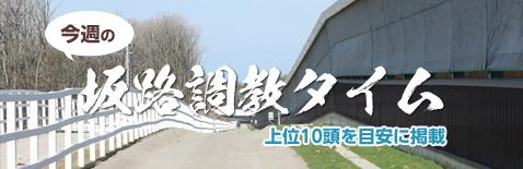 坂路調教BEST10