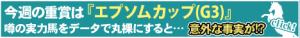 ヱプソムカップ②